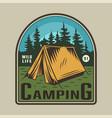 vintage colorful camping time emblem vector image vector image