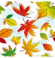autumn leave vector image vector image