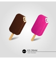 Chocolate and fruit ice cream vector image