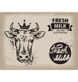 cow logo design template beef milk or vector image vector image