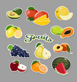 fruits sticker collection vector image vector image