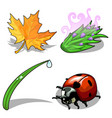 ladybug and plants on a white background vector image vector image