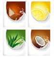 milk splash with lemon cacao aloe vera coconut vector image vector image