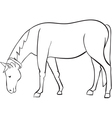 outline horse vector image vector image