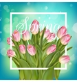 Spring text with tulip flower EPS 10 vector image vector image