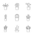 succulent cactus icon set outline style vector image vector image