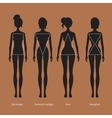 Female body types silhouettes vector image vector image