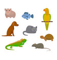 flat cartoon set with various pets vector image