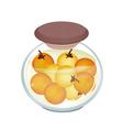 Jar of Pikled Solanum Stramonifolium vector image vector image