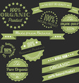 Old retro vintage elements for organic natural vector image vector image