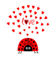 red lady bug insect with hearts cute cartoon vector image vector image