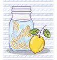 summer lemonade juice vector image vector image
