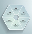 White Paper Hexagon Infographics Design vector image