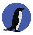 adelle penguin on white background vector image vector image
