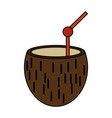 coconut exotic drink vector image