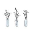 floral compositions in vases and bottles vector image