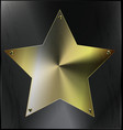 metal sheet with golden star vector image
