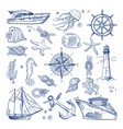 sea or ocean underwater life with different vector image