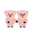 cute couple pig wild animal with face expression vector image vector image