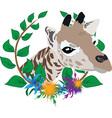 giraffe zoo symbol vector image vector image
