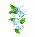 mint gum and ice cubes realistic fresh chewing vector image