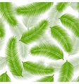 Palm leaves seamless vector image vector image