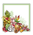summer background with fruit and flowers vector image