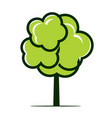 summer naked tree outline plant in vector image vector image