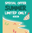 summer sale banners on isolated background vector image