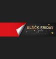 black friday sale gold message red paper rolls vector image vector image