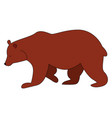 brown bear on white background vector image vector image