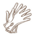 leather vintage gloves hand female accessory in vector image