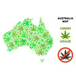 royalty free cannabis leaves composition australia vector image