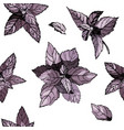 seamless pattern with basil leavesbasil hand vector image vector image