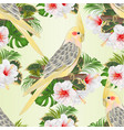 seamless texture funny parrot yellow cockatiel vector image vector image