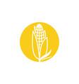 agriculture corn icon design vector image