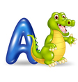 Cartoon of A letter for Alligator vector image vector image