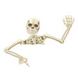 halloween skeleton pointing vector image vector image