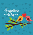 valentines day card couple birds heart in branch vector image