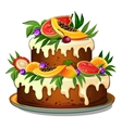 Cake decorated with tropical fruits vector image