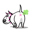 cute cartoon dog angry white bull terrier vector image
