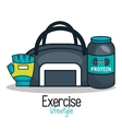 gym equipment flat icons vector image vector image