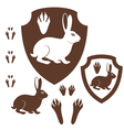 Hare Paw Print vector image vector image
