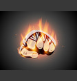 mma or boxing burning bandage fist mixed martial vector image