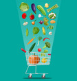 shopping cart full of vegetables vector image vector image