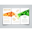 Tri-fold modern brochure design template with vector image