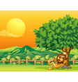 A king lion inside the wooden fence vector image vector image