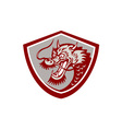Chinese Red Dragon Head Shield vector image vector image