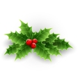 Christmas Holly Berry vector image vector image