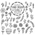 Hand drawn floral elements for your design vector image